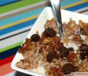 Cinnamon Pecan Crunch Cereal
