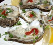 Raw Oysters (with fresh horseradish)
