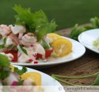 Shrimp & Scallop Ceviche