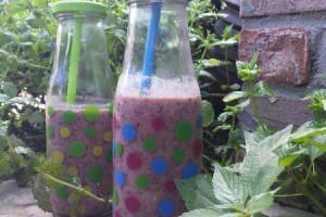 Blueberry Blast Smoothie