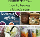 Fermentation February…becoming a (c)rock star!!