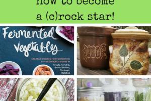 Fermentation February…becoming a (c)rock star!!