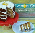 Lemon Cake (gfree and paleo-ish)